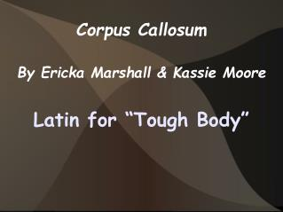 Corpus Callosum By Ericka Marshall & Kassie Moore