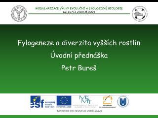 Fylogeneze a diverzita vyšších rostlin Úvodní přednáška Petr Bureš