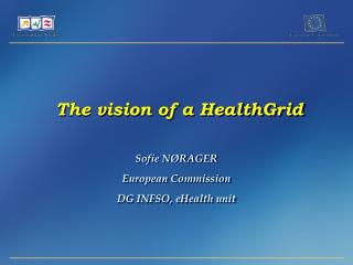 The vision of a HealthGrid