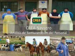 CREA Navarro Análisis de Remuneración del Personal