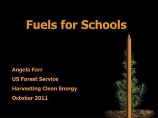 Fuels for Schools