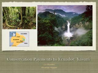 Conservation Payments to Ecuador: Yasuní