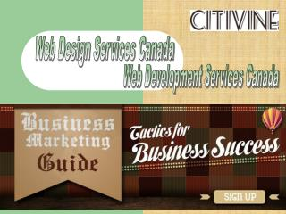 Web Design Services In Montreal