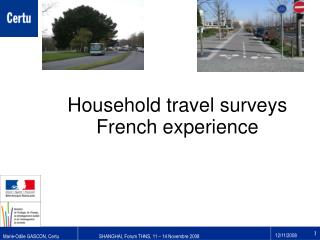 Household travel surveys French experience
