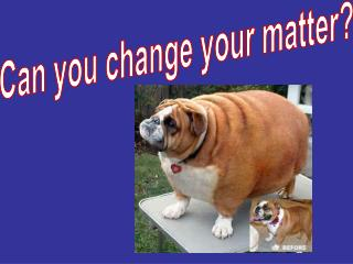 Can you change your matter?