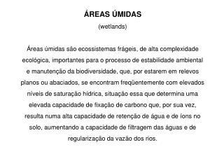Formações Pioneiras (IBGE, 1992)