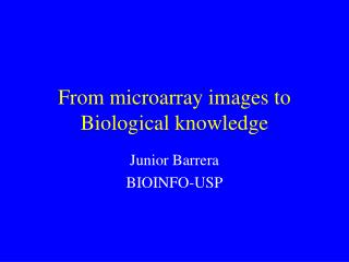 From microarray images to Biological knowledge