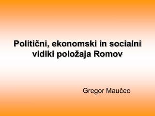 Politični, ekonomski in socialni vidiki položaja Romov
