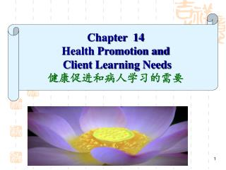 Chapter  14 Health Promotion and  Client Learning Needs 健康促进和病人学习的需要
