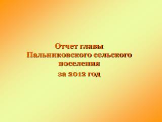 Отчет главы Пальниковского сельского поселения  за 2012 год