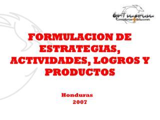 FORMULACION DE ESTRATEGIAS, ACTIVIDADES, LOGROS Y PRODUCTOS
