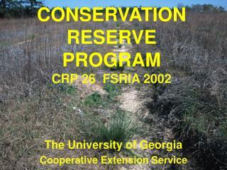 CONSERVATION RESERVE PROGRAM CRP 26  FSRIA 2002