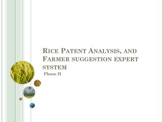 Rice Patent Analysis, and  Farmer suggestion expert system