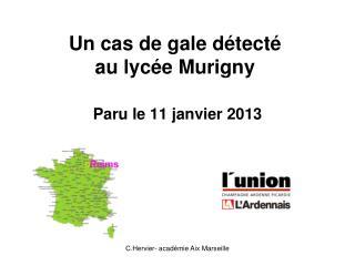 Un cas de gale détecté  au lycée Murigny