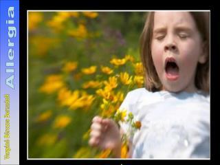 Allergia - túlérzékenység (atopia)