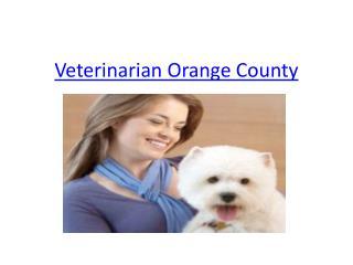 Veterinarian Orange County