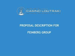 PROPOSAL DESCRIPTION FOR FEINBERG GROUP