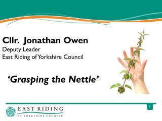 'Grasping the Nettle'