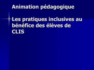 Animation pédagogique Les pratiques inclusives au bénéfice des élèves de CLIS