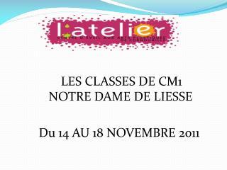 LES CLASSES DE CM1          NOTRE DAME DE LIESSE         Du 14 AU 18 NOVEMBRE 2011
