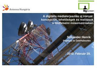 Schneider Henrik Stratégia és Üzletfejlesztés 2012. Február 29.