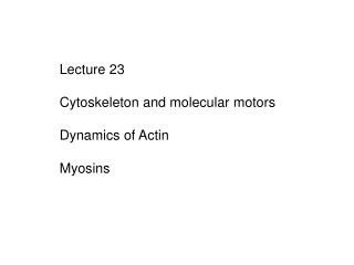 Lecture 23 Cytoskeleton and molecular motors Dynamics of Actin Myosins