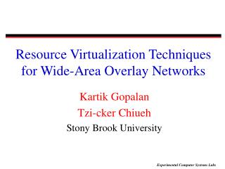 Resource Virtualization Techniques for Wide-Area Overlay Networks