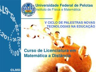 Universidade Federal de Pelotas Instituto de Física e Matemática