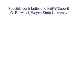 Possible contributions to KEKB/SuperB  G. Bonvicini, Wayne State University