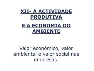 XII- A ACTIVIDADE PRODUTIVA  E A ECONOMIA DO AMBIENTE