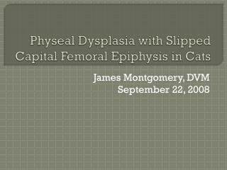 Physeal Dysplasia with Slipped Capital Femoral Epiphysis in Cats