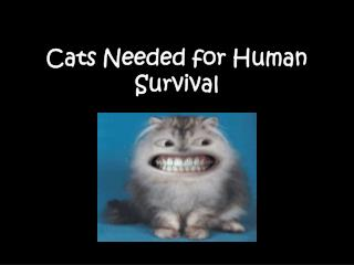 Cats Needed for Human Survival