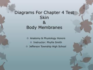 Diagrams For Chapter 4 Test Skin  &  Body Membranes