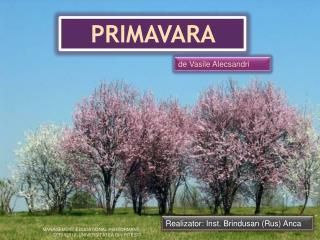 P RIMAVARA