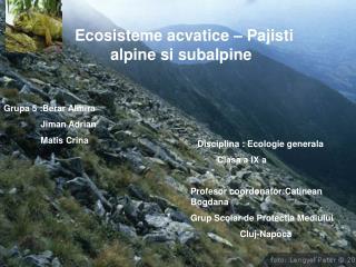 Ecosisteme acvatice – Pajisti     alpine si subalpine