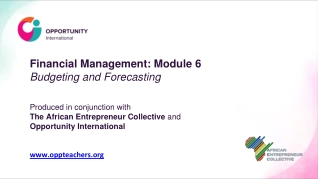 Financial Elements of Forecasting, Budgeting, and Cash  Management
