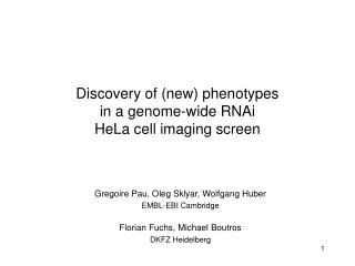 Discovery of (new) phenotypes in a genome-wide RNAi  HeLa cell imaging screen