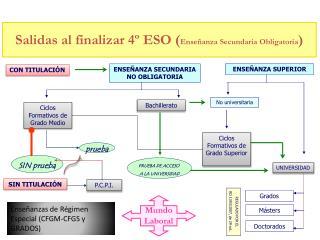 Salidas al finalizar 4º ESO ( Enseñanza Secundaria Obligatoria )