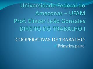 Universidade Federal do Amazonas – UFAM Prof. Eliezer Leão Gonzales DIREITO DO TRABALHO I