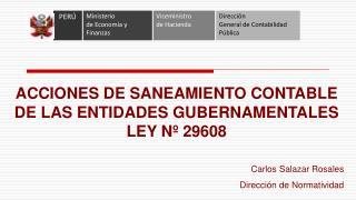 ACCIONES DE SANEAMIENTO CONTABLE DE LAS ENTIDADES GUBERNAMENTALES LEY Nº 29608