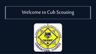 Welcome to Cub Scouting