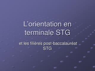 L orientation en terminale STG