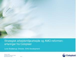 Strategisk arbejdsmiljøarbejde og  AMO-reformen ; erfaringer fra Coloplast