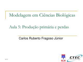 Modelagem em Ciências Biológicas Aula 5:  Produção primária e perdas