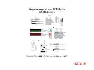 M Ko  et al. Nature  000 , 1-5 (2013) doi:10.1038/nature12052