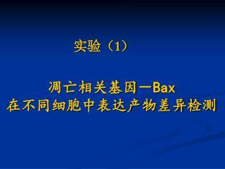 凋亡相关基因- Bax 在不同细胞中表达产物差异检测
