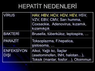 HEPATİT NEDENLERİ