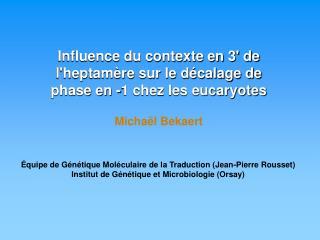 Influence du contexte en 3' de l'heptamère sur le décalage de phase en -1 chez les eucaryotes