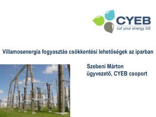 Villamosenergia  fogyasztás csökkentési lehetőségek az iparban                  Szebeni Márton