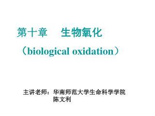 第十章 生物氧化 ( biological oxidation )